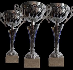 Cupa Standard Argintie