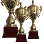 Cupa Sportiva Standard